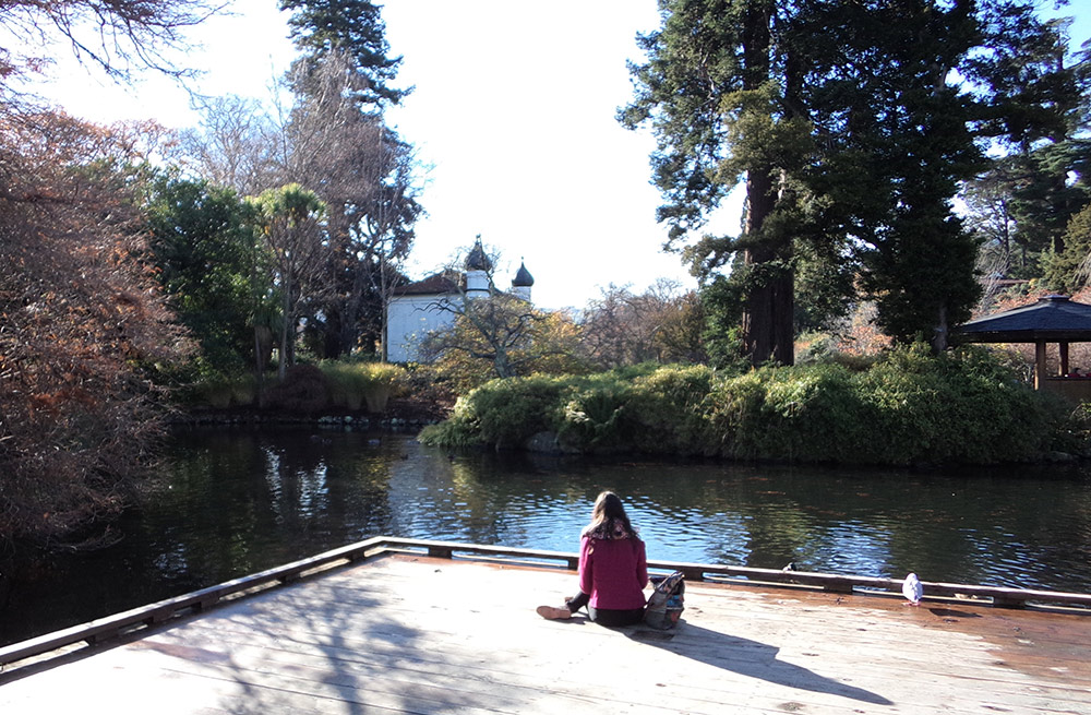 Duck Pond jetty at the Dunedin Botanic Garden in autumn.