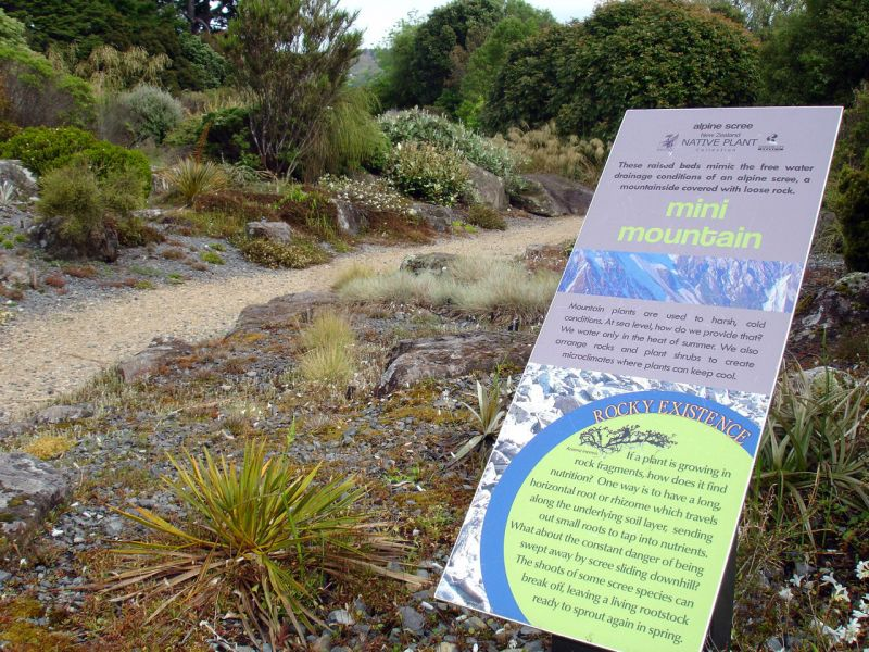 The New Zealand native plant collection has a bold, modern design, reflecting native plants' strong, dynamic features.