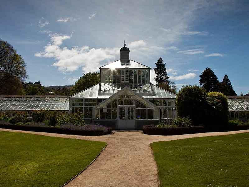 Plant collections - Dunedin Botanic Garden