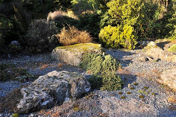 Mimicking a mountain - Alpine Scree Garden
